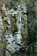 cascada-del-seminario-2